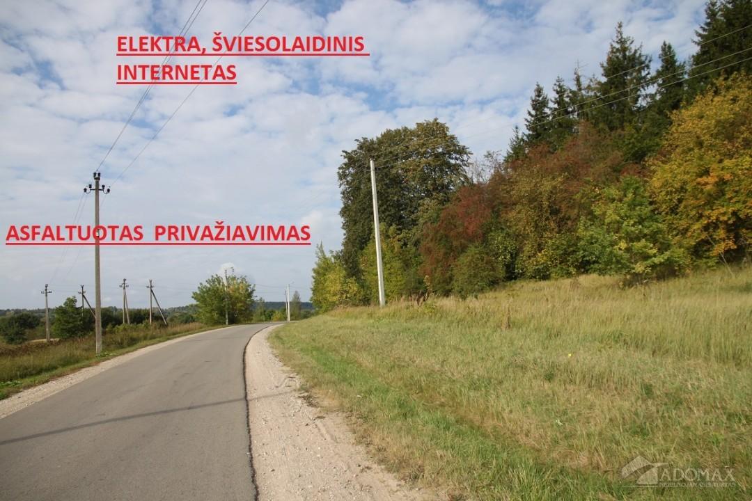 http://www.adomax.lt/nt-photo.php?src=%2Fnt-photos%2F24571%2F24571_1568707918_1.jpg&w=1024&h=768&zc=1